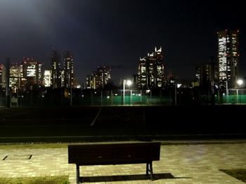 1.10*新宿夜景*31.7-343.jpg