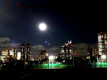 1.13*新宿夜景*綺麗な夜景38.4-345.jpg