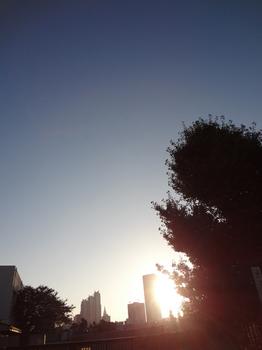 10.12*朝の新宿*51.2.jpg
