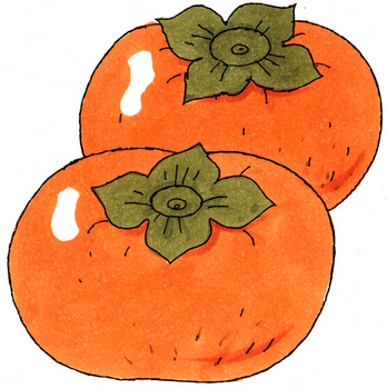 10.12*甘柿*197.3.jpg