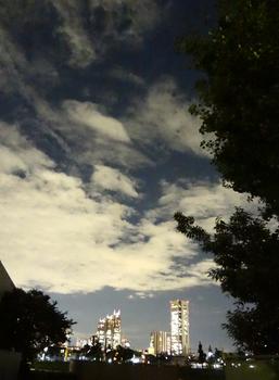 10.2*新宿夜景*55.25.jpg