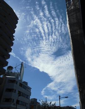 10.6*綺麗な雲*8.1-344.jpg