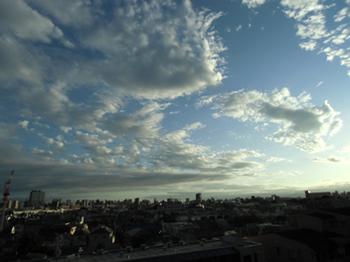 10.7*夕方のシンジュク*5.5-272.jpg