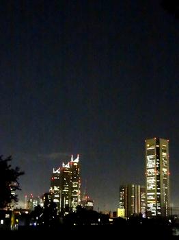 10.9*夜の新宿*51.2**.jpg