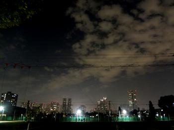 11.20*夜の新宿*31.8-344.jpg