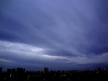 11.27*早朝*30-343.jpg