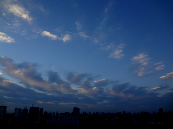 16.12.6*朝の空*30-343.jpg
