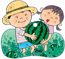 17.6.27*スイカの収穫*100-226.jpg