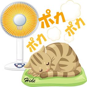 2.23*猫の昼寝*70-236.3.jpg
