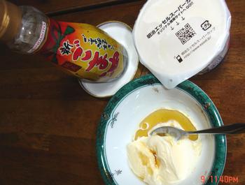 2012.7.9*アイスへゴマ油を*17.5.jpg