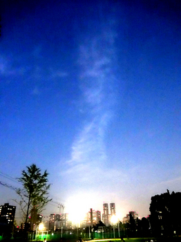 2016.10.2*6時新宿夜景50-952.jpg