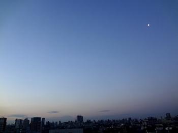 2017.2.17*早朝*30-343.jpg