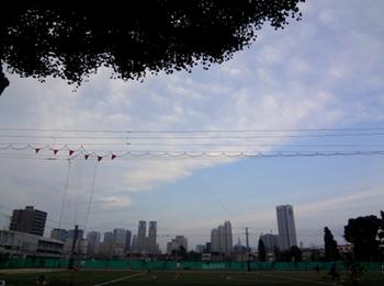 2017.7.12*夕方の公園*28-298.jpg