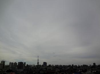 2017.7.23*早朝*28-298.jpg