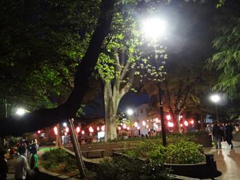4.8*夜桜まつり*43.5-398.1.jpg