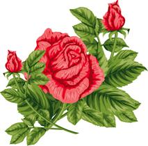 5.16*赤いバラ*鏡*60-131.jpg