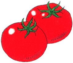 6.28*ツマミは冷しトマトで*100-143.jpg