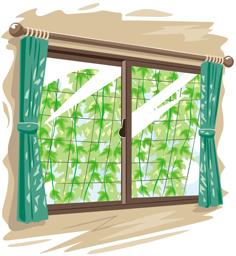 6.8*グリーンカーテン*20-177.0.jpg