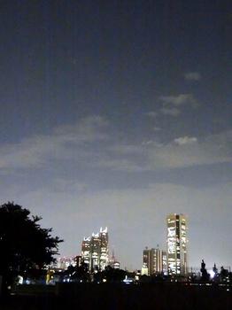 8.30***新宿夜景**51.2.jpg