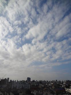 9.10*朝の空-1-26.1*.jpg