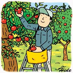 9.16*リンゴ狩り*89-234.jpg