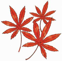9.20*紅葉*82-240.jpg