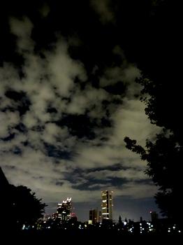 9.28*夜の新宿*8:18*51.2.jpg
