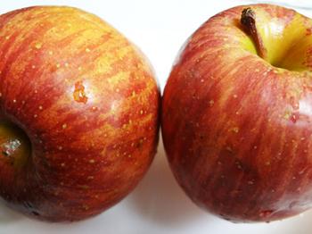 りんご*32-389.8.jpg