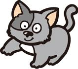 ネコ*80-64.8.jpg