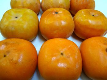 ユウジンから柿が*28-298.jpg