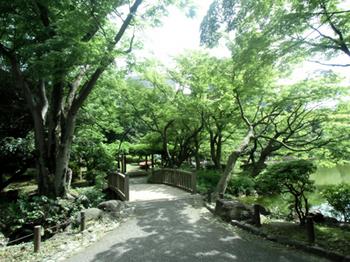 日比谷公園*6.3-357.jpg