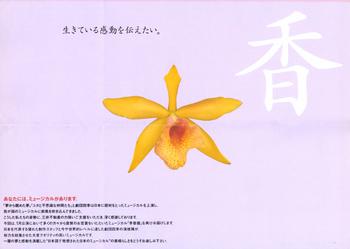 李香蘭-3*58.jpg
