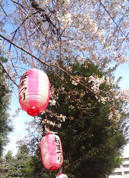 桜まつり*44.4-417.jpg