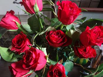 薔薇もバラバラ*34.5-345.jpg