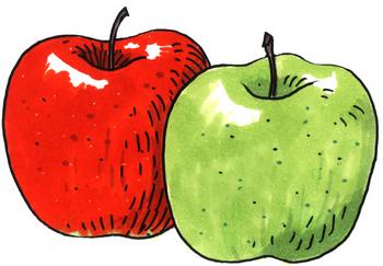 10.1*リンゴ*241.2.jpg