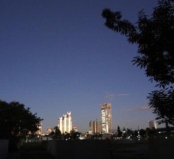 10.11*夜の新宿*57.6.jpg