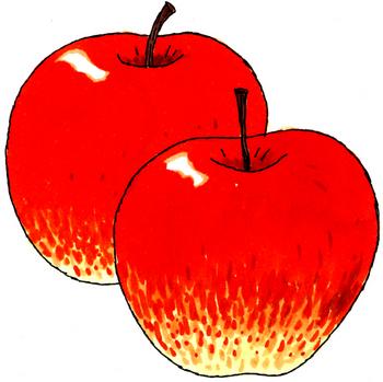 10.12*リンゴ*201.5.jpg