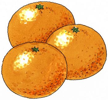 10.24*オレンジ*206.7.jpg