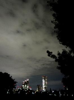 10.3*新宿夜景*51.2.jpg