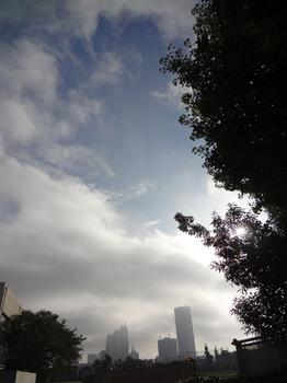 10.8*朝の新宿*51.2.jpg