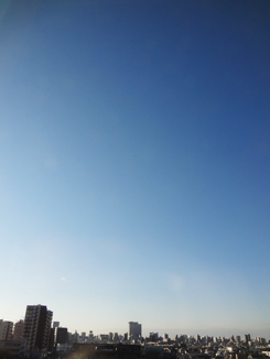11.3*朝ですが*26-234.0.jpg