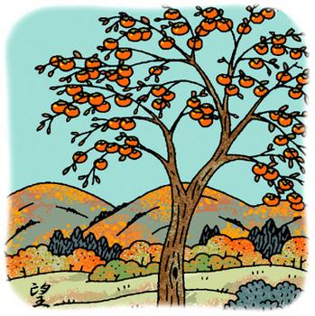 17.11.30*柿の木*130-383.jpg
