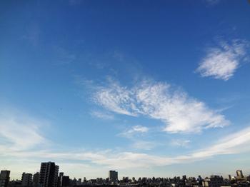 18.10.1*台風一過*30-342.5.jpg