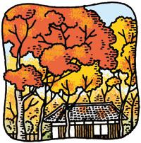 18.10.31*紅葉の季節*70-157.8.jpg