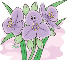 19.6.9*紫露草*70-181.8.jpg