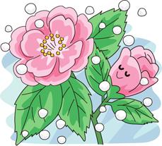 2.13*山茶花*60-138.9.jpg