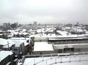 2016.1.18*新宿に雪*52.jpg