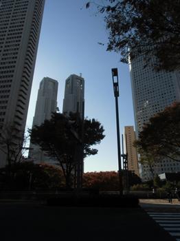 2017.11.9*新宿の午後*5*5.7-293.jpg