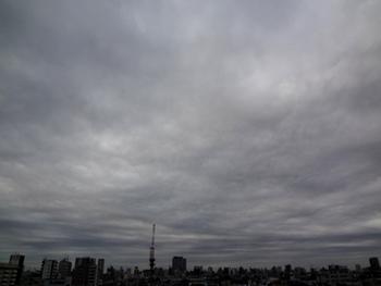 2017.9.15*早朝*27-278.jpg
