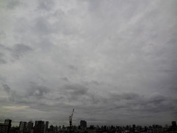 2017.9.16早朝*27-278.jpg